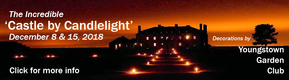 Tickers to the 'Castle by Candlelight' are limited. Get them soon!!! Only 2 nights.